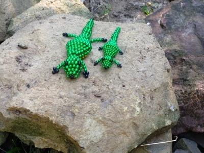 krokodil a köveken