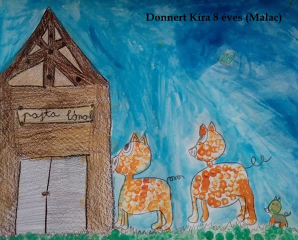 1. donert Kira -Debrecen-malac