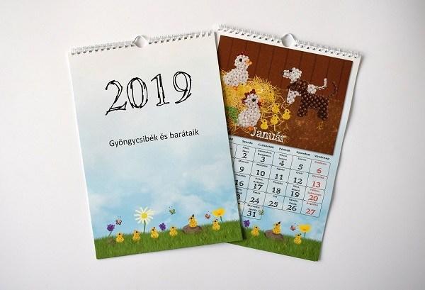 2019 januar kicsi