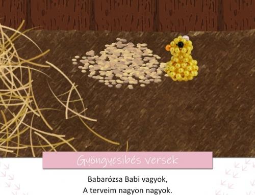 Gyöngycsibés játékos feladatok 1. rész – Babarózsa Babi