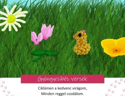 Gyöngycsibés játékos feladatok 4. rész – Ciklámen Cili
