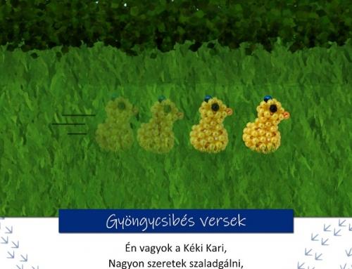 Gyöngycsibés játékos feladatok 5. rész – Kéki Kari