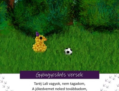 Gyöngycsibés játékos feladatok 6. rész – Taréj Lali